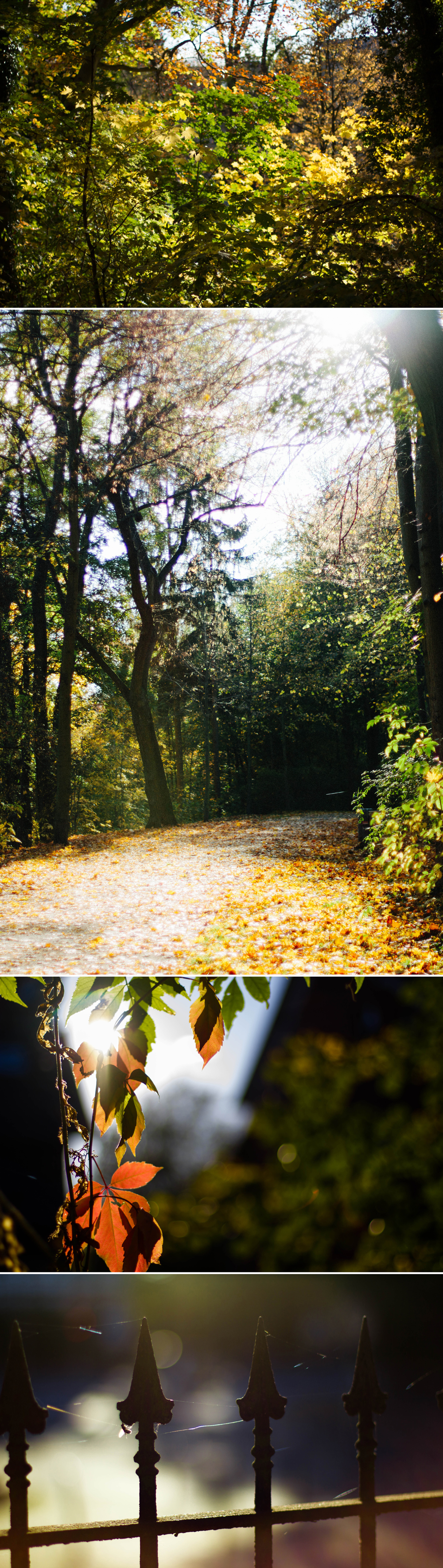 fall_2012
